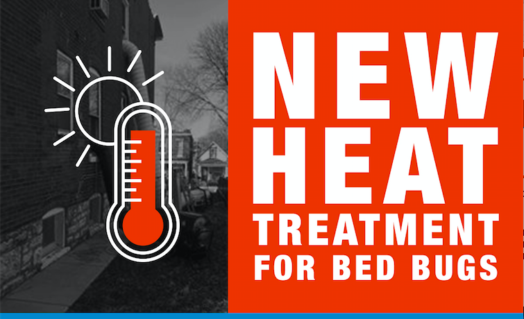 bed bug heat treatment | micks exterminating